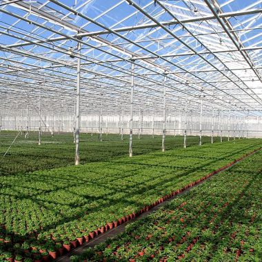 agricultural-complexes-15