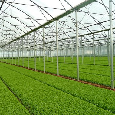 agricultural-complexes-17