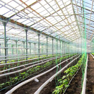 agricultural-complexes-24