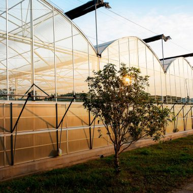 agricultural-complexes-5